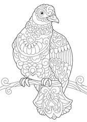 Coloring page of dove (pigeon) bird sitting on tree branch. Freehand sketch drawing for adult antistress coloring book in zentangle style.