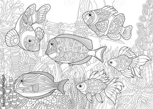 Coloring Page Of Underwater World Different Fish Species On The Background A Sunken Ship