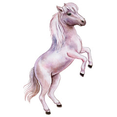 Pony. The horse is white and pink. Watercolor. Illustration