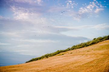 Coucher de soleil sur la campagne dans le Parc Naturel Régional du Pilat