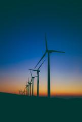 Windmill turbines generating energy