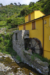 Aluminium Prints Mills Old mill by the river near the Vernazza village, Vernazza is one of the five famous Cinque Terre villages