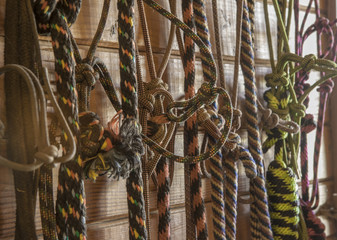 rope horse halters and leads hanging in barn tack room