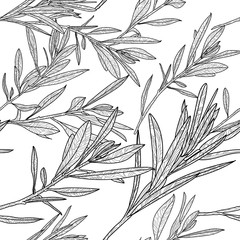 Vector autumn leaves seamless pattern. Black and white background with outline hand drawn branches and leaves. Design for fabric, textile print, wrapping paper or coloring book.