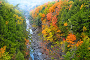 Stream passing through Quechee gorge in autumn time