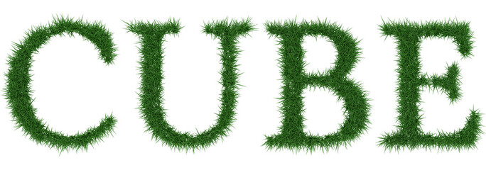 Cube - 3D rendering fresh Grass letters isolated on whhite background.