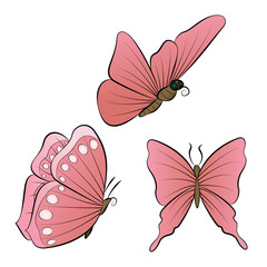 Butterflies with red wings color. Nature summer vector illustration.