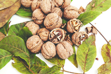 pile of walnuts lie on top of leaves on white