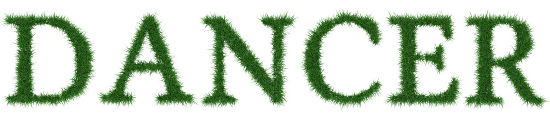Dancer - 3D rendering fresh Grass letters isolated on whhite background.