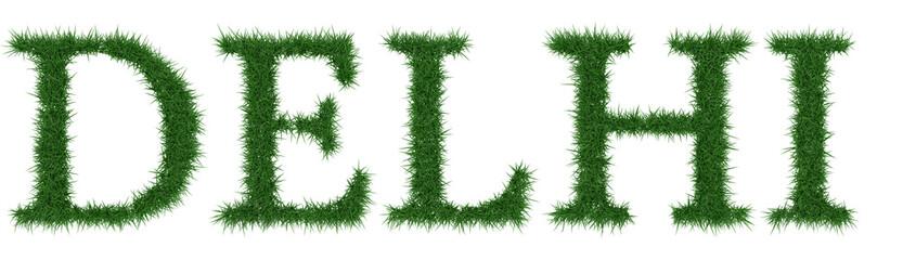 Delhi - 3D rendering fresh Grass letters isolated on whhite background.
