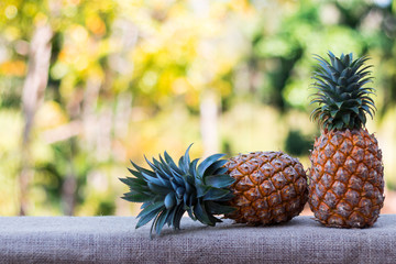 two  Pineapple on wood table with nature background