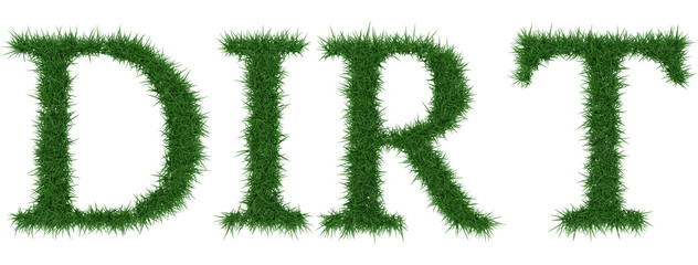 Dirt - 3D rendering fresh Grass letters isolated on whhite background.