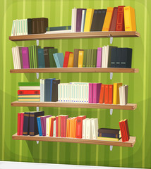 Cartoon Library Bookshelf On The Wall