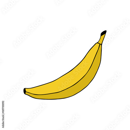 Doodle Banana Vector Illustration Drawing Isolated On White