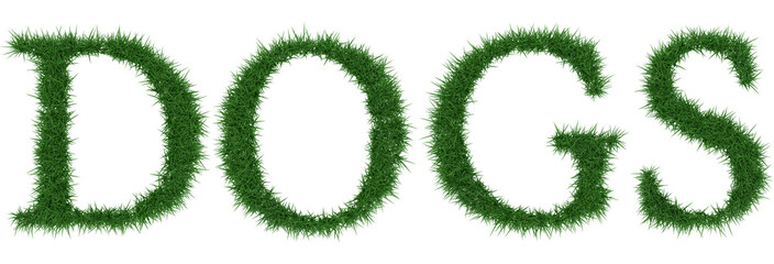 Dogs - 3D rendering fresh Grass letters isolated on whhite background.