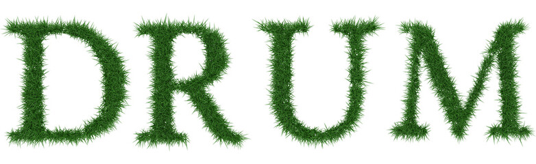Drum - 3D rendering fresh Grass letters isolated on whhite background.