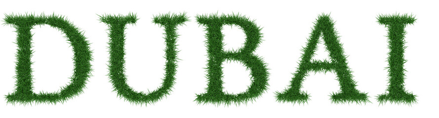Dubai - 3D rendering fresh Grass letters isolated on whhite background.