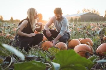 Couple checking pumpkin