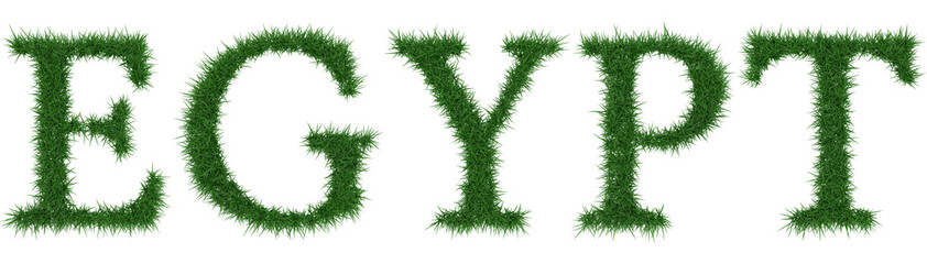 Egypt - 3D rendering fresh Grass letters isolated on whhite background.