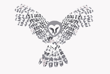 Flying owl. Hand drawn vector illustration.