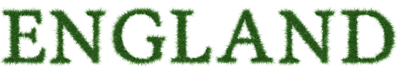 England - 3D rendering fresh Grass letters isolated on whhite background.