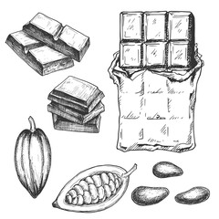 Hand drawn chocolate bar and cacao beans, black and white draft sketch isolated on white background. Vintage vector food illustration.