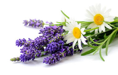 Daisies and Lavender flowers bunch on white background Wall mural
