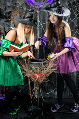 Witches in their hats brew potions in a cauldron