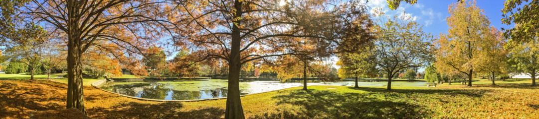 Springfield Missouri Pond