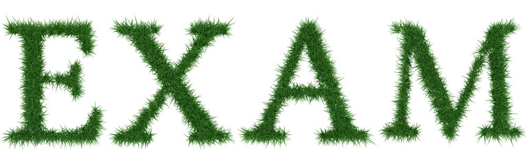 Exam - 3D rendering fresh Grass letters isolated on whhite background.
