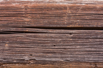 Wooden texture with woodworm