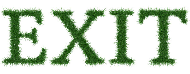 Exit - 3D rendering fresh Grass letters isolated on whhite background.