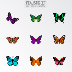 Realistic Monarch, Callicore Cynosura, Butterfly And Other Vector Elements. Set Of Butterfly Realistic Symbols Also Includes Violet, Bluewing, Orange Objects.