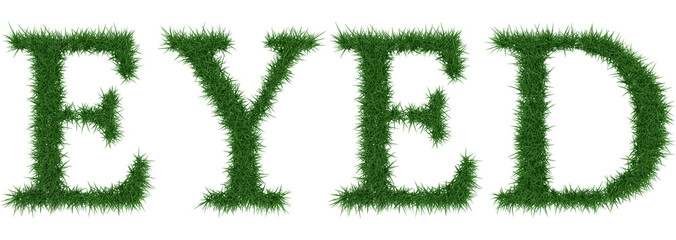 Eyed - 3D rendering fresh Grass letters isolated on whhite background.