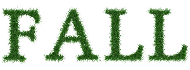 Fall - 3D rendering fresh Grass letters isolated on whhite background.