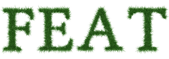 Feat - 3D rendering fresh Grass letters isolated on whhite background.