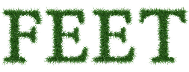Feet - 3D rendering fresh Grass letters isolated on whhite background.