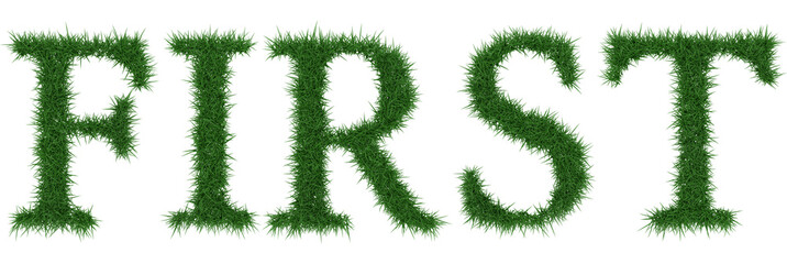 First - 3D rendering fresh Grass letters isolated on whhite background.