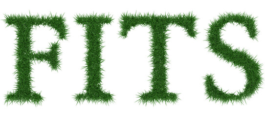 Fits - 3D rendering fresh Grass letters isolated on whhite background.