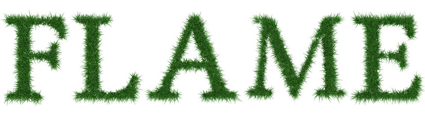 Flame - 3D rendering fresh Grass letters isolated on whhite background.