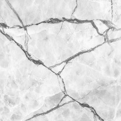 Wall Mural - white marble texture background