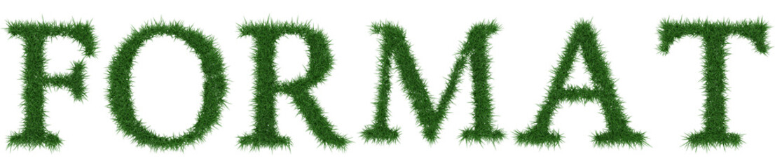 Format - 3D rendering fresh Grass letters isolated on whhite background.