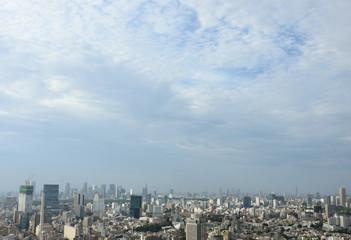 日本の東京都市景観「渋谷区や新宿区、豊島区などの高層ビル群などを望む」