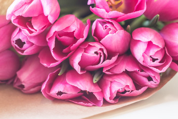 close up picture of fresh pink and purple tulips on table