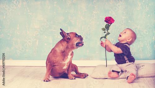 rose verschenken kind und hund stockfotos und lizenzfreie bilder auf bild. Black Bedroom Furniture Sets. Home Design Ideas
