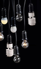 eight electric lamps in receptacle isolated on black