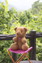 Teddy bear on a natural background