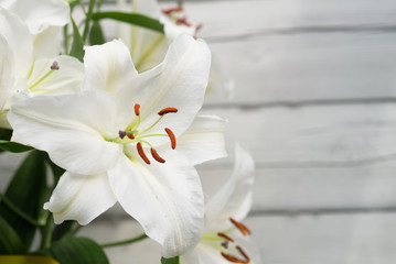 White lilies on light wooden background