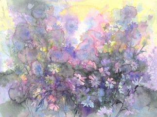 august meadow flowers watercolor background