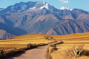 Peruvian pampa
